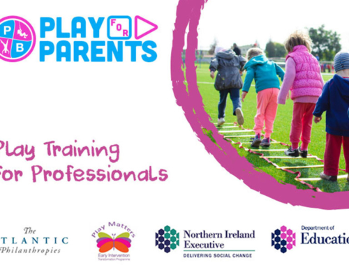 Play Training For Professionals