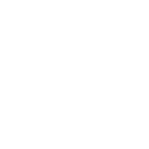 Website Icon - White - Scooter