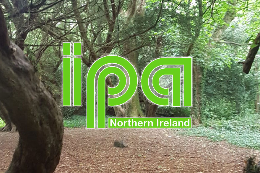 PlayBoard Latest News - IPA NI Play Gathering - 2019