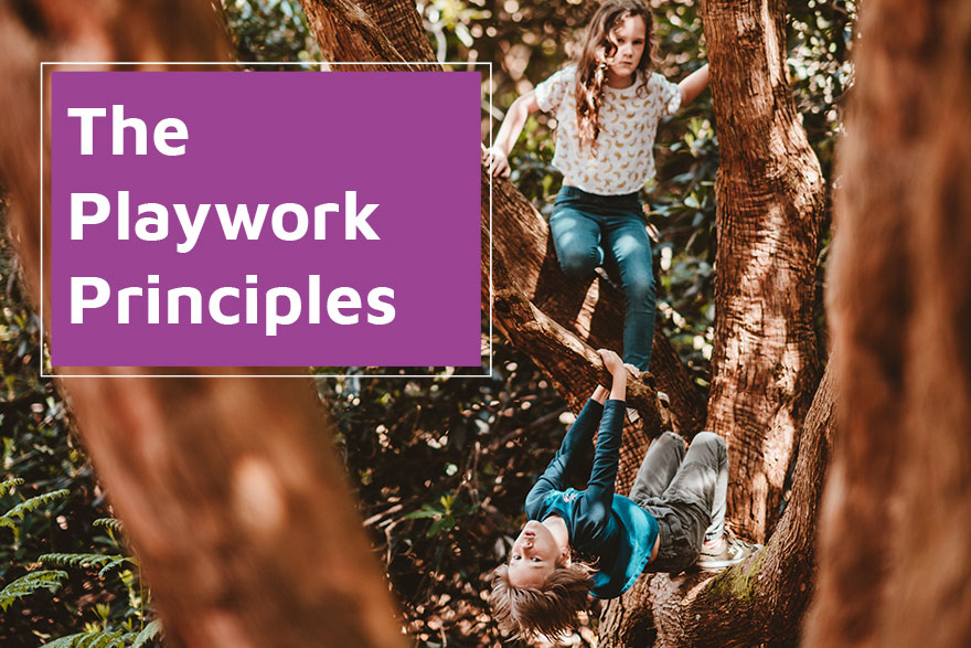 Publication - The Playwork Principles - 2020